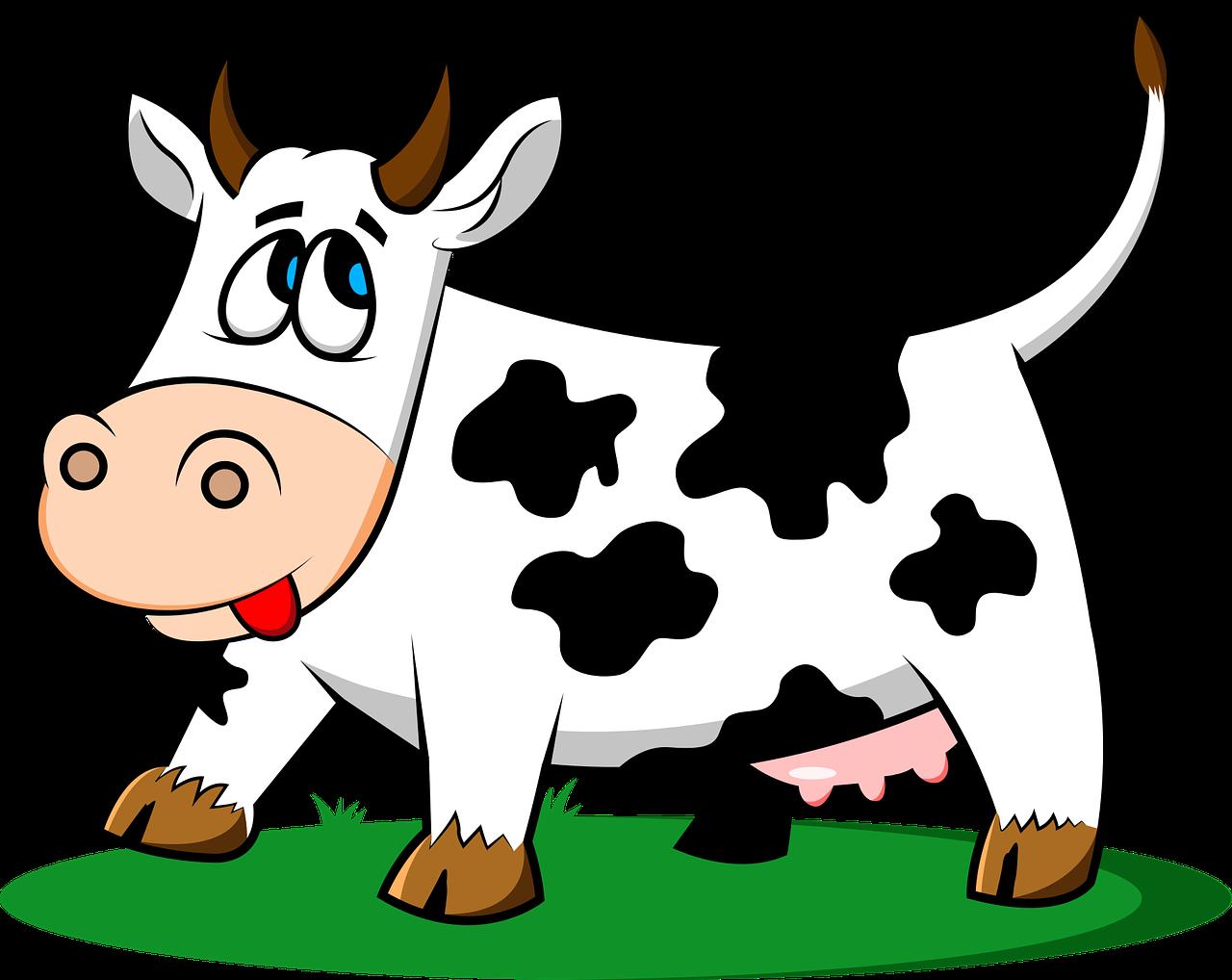 cow, animal, livestock